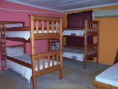 Backpacker Accommodation